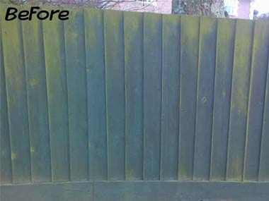 fencing before image